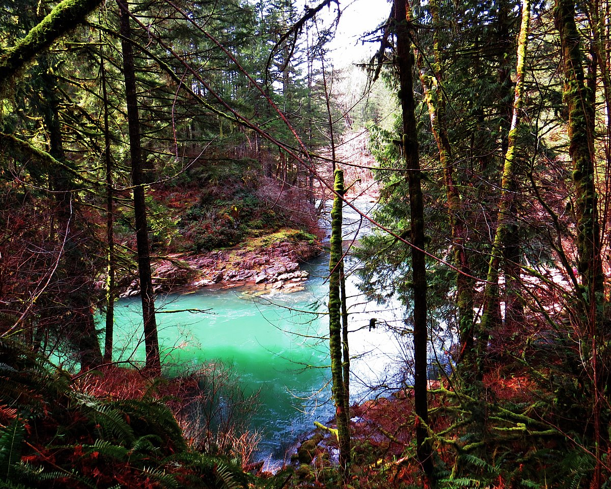 Washington Hikes: The Stunning Moulton Falls Trail